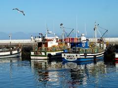 Fishing Boats at Kalk Bay South Africa