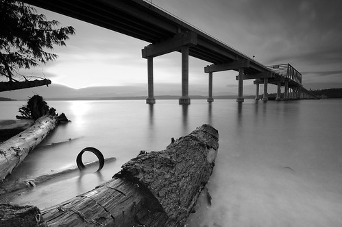 longexposure bridge trees winter sunset blackandwhite bw shells beach landscape blackwhite washington nikon northwest timber debris olympicpeninsula rope ring pacificnorthwest wa limbs pnw tangle poulsbo hoodcanal kitsappeninsula kitsapcounty jeffersoncounty blackwhitephotos d7000