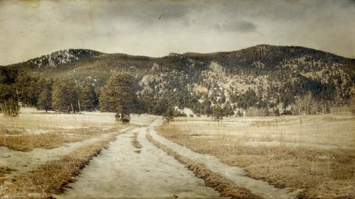road trees winter sky snow grass clouds canon colorado meadow textured 16x9 ruts elkmeadow bergenpeak t1i magicunicornverybest
