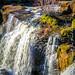 Reedy Falls-3608