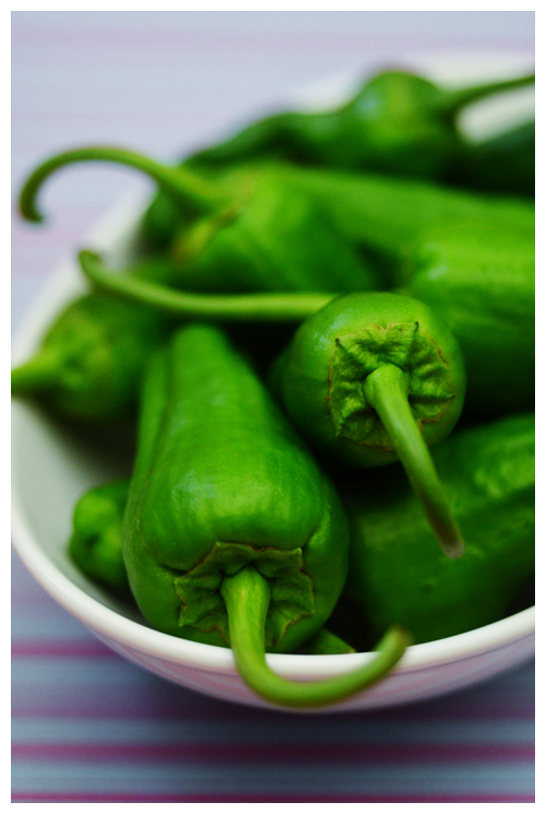 padron pepper© by Haalo