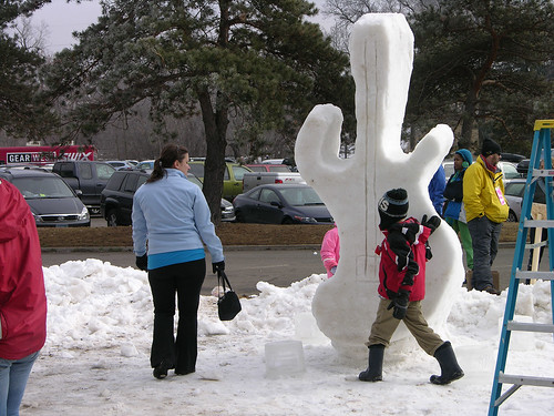 snow guitar