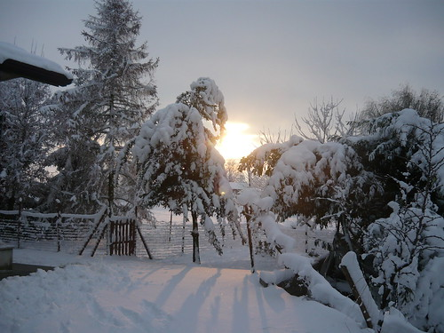 Neve 19 dicembre 2009 by meteomike