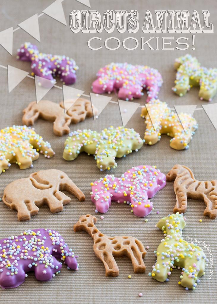 spring circus animal cookies