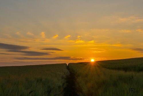 Sunrise-06651