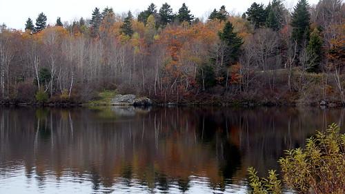 autumn lake canada reflection fall nature water beauty outdoors newbrunswick saintjohn lilylake rockwoodpark