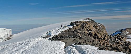 paka_kilimanjaro4