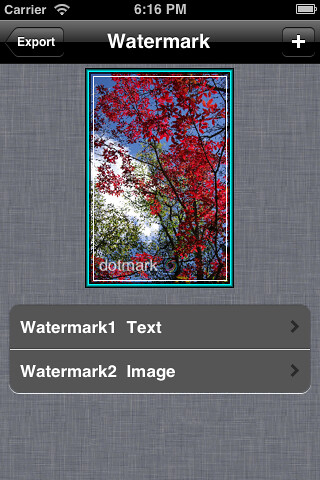 ScreenShot_Watermark1