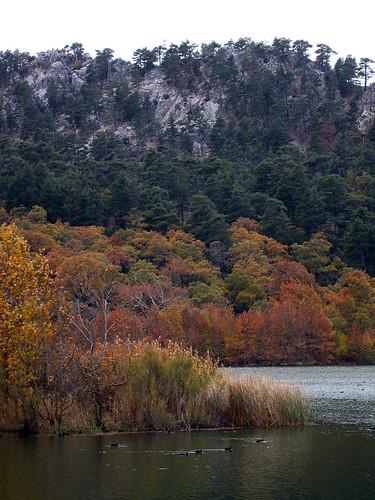 Kovada Gölü Autumn