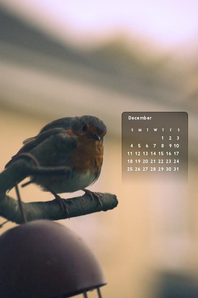 December 2011's calendar :: iPhone4