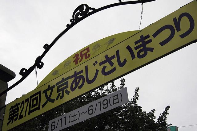 110611_142216_文京区白山神社_あじさいまつり