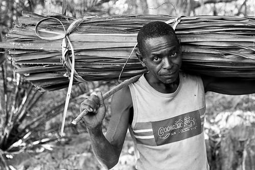 Work at Bekopaka, par Franck Vervial
