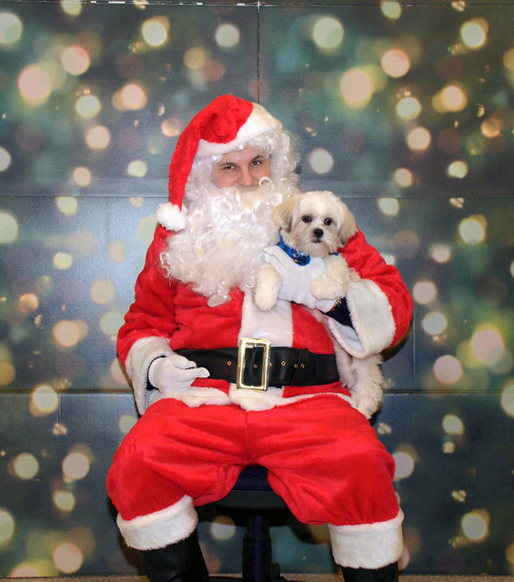 Todd Clark (Broker / Team Leader) SantaPaws in Clackamas
