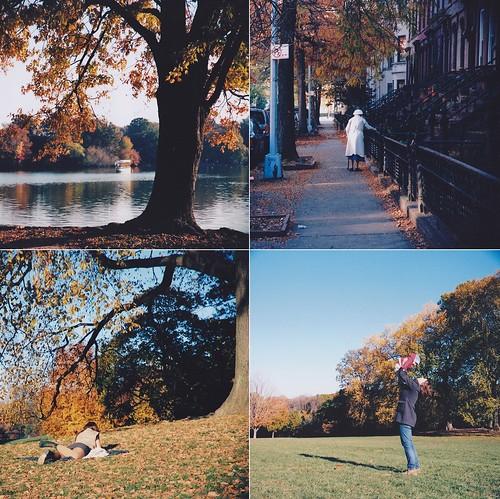 prospect park november