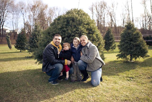 Christmas tree 2011-2