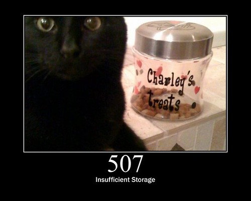 507 insufficent storage