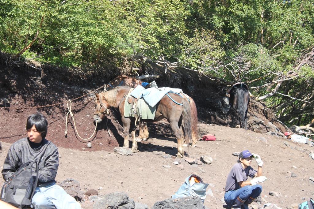 Mt. Fuji experience report (Yoshida route) Part4 (19)