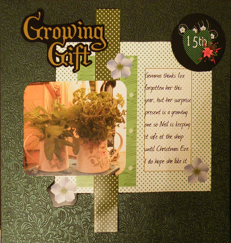 15th Growing Gift