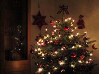 O Christmas Tree  ♪ ♫ ♪ ♫ ♪