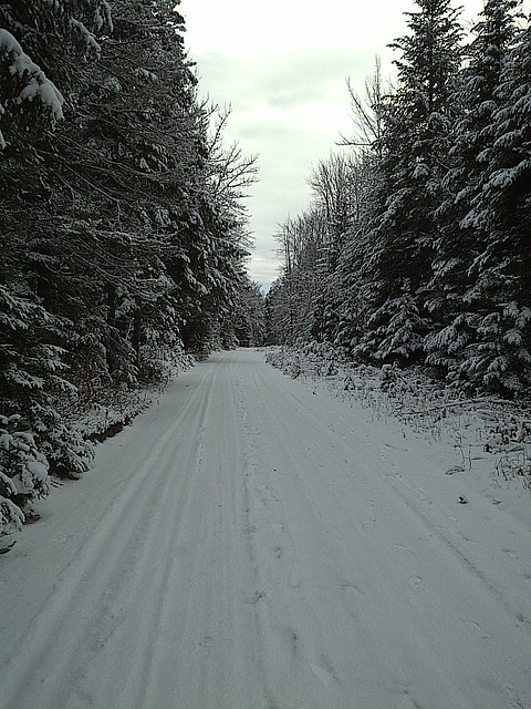 The road less traveled, Christmas Day