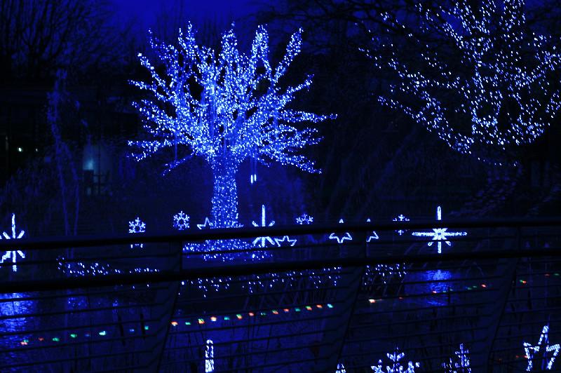 Christmas Lights, 2011