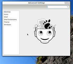 Gnome 3 Advanced Settings App aka Gnome tweak tool