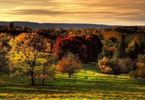 sunset usa mountain tree clouds forest landscape virginia nikon pastoral loudouncounty tomlussier landscapespec2012