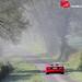 Ferrari F40 by Martin Vincent