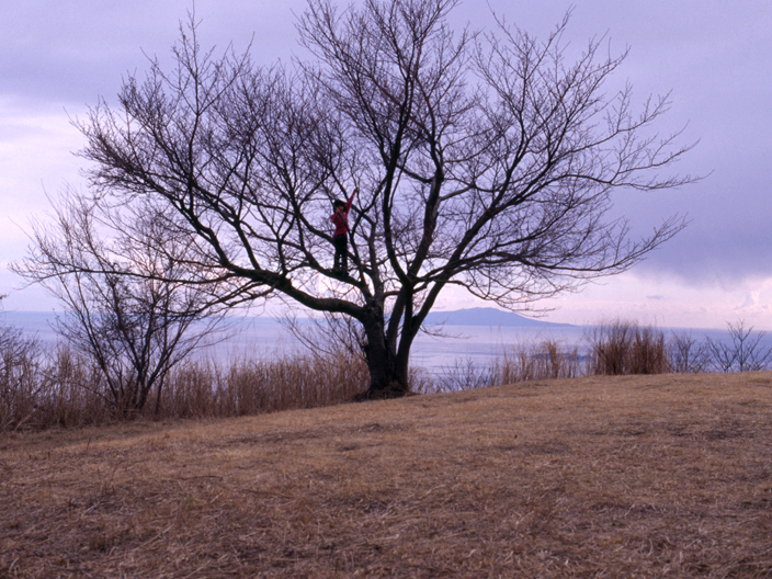 20110125_Nikon_FE2_Ai50mmF1.4_KODAK_E100G-4-06