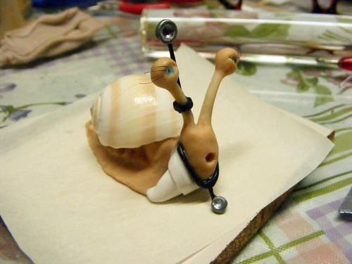 doctor snail