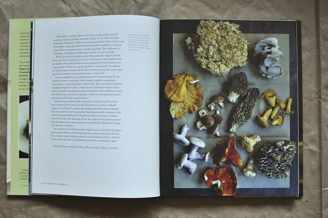 Candle 79 mushroom page