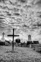 Wooden cross at Waverley Cemetery