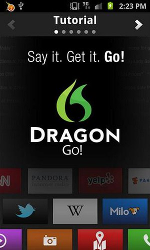 Dragon Go!_01