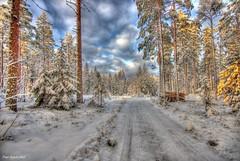 Finland. Winter Tale.