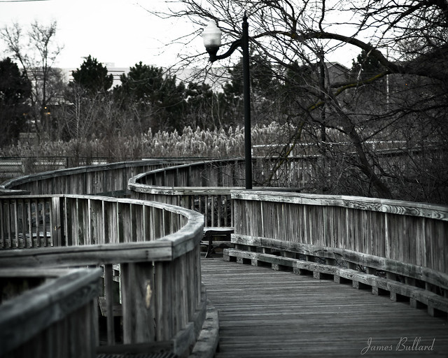 Wetlands Winding Walk