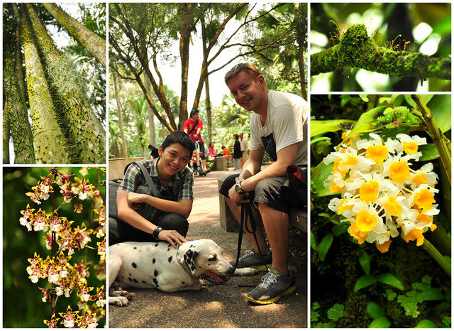 Singapore Botanic Garden is an awesome  place not to be missed!