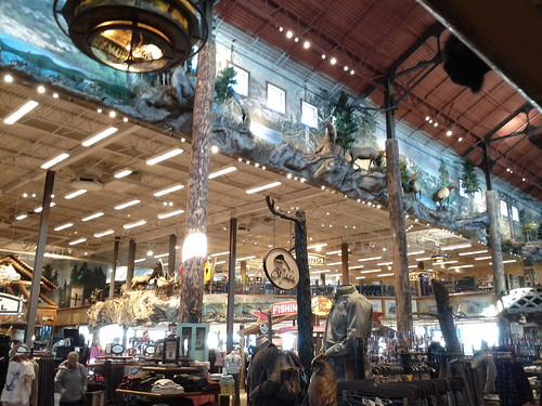 day016: in the Bass Pro Shop