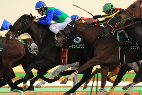 フェアリーS勝ち馬 トーセンベニザクラ(津村明秀)