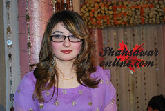 gul panra picture gul panra more photos from gul panra