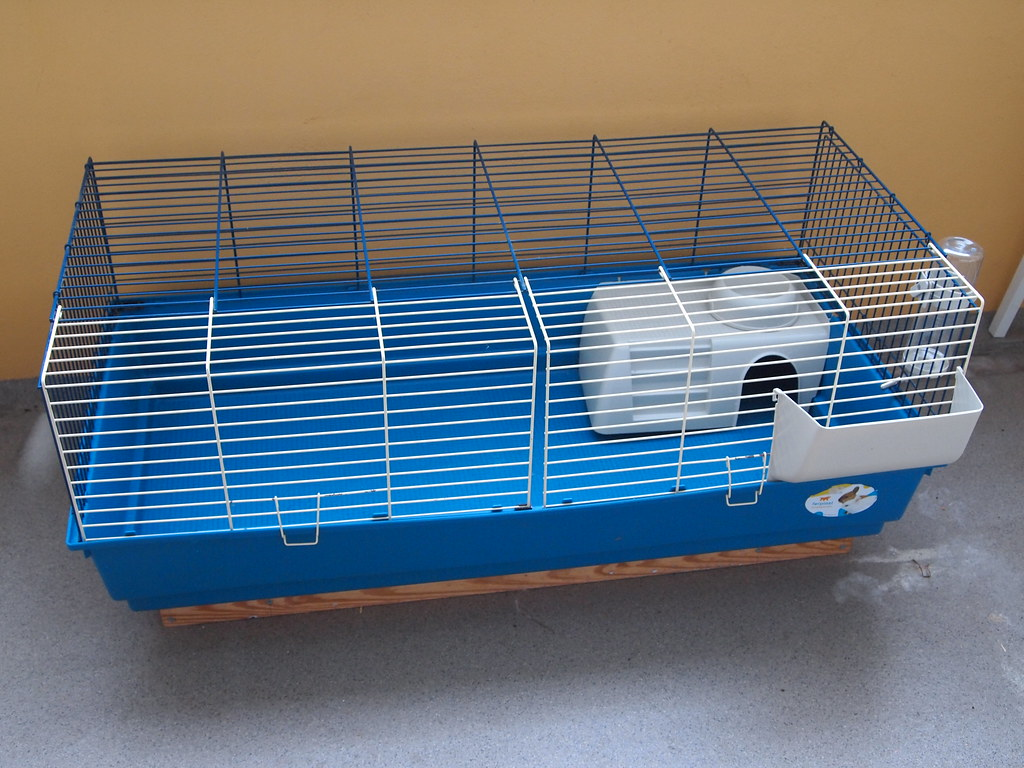 Guinea pig cages