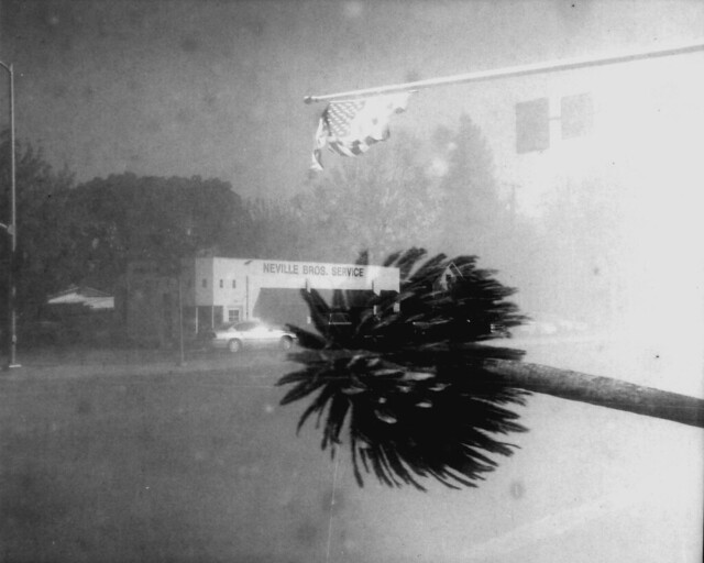 Nagel Pupille Efke 100 127 film  0072