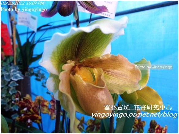 雲林古坑_花卉研究中心20120123_R0050671