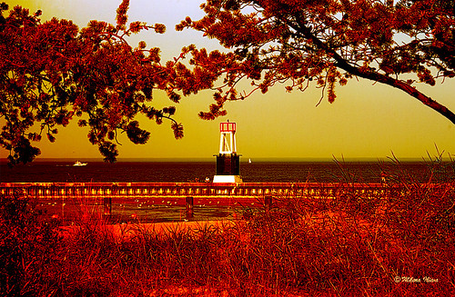 Red Afternoon