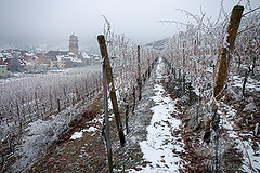 winter in alsace