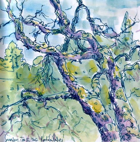January 2011: Tree