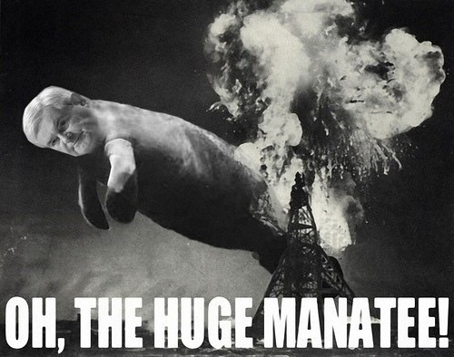 OH THE HUGE MANATEE! by Colonel Flick