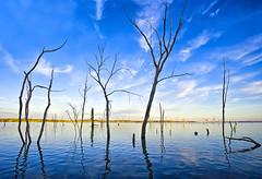 [フリー画像素材] 自然風景, 河川・湖, 樹木, 青色・ブルー ID:201202080600