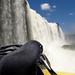 Spidey getting a close view of Iguazu Falls, Brazil 27JAN12