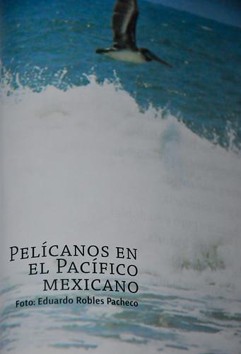 Revista Cámara - Noviembre 2011 (3)