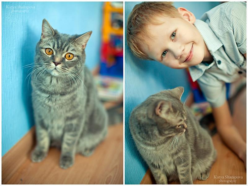фото у насти котята3
